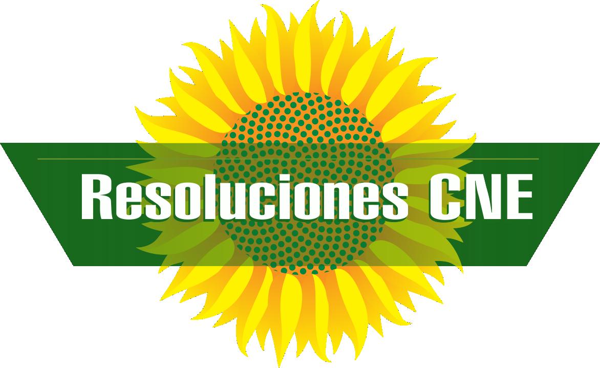 resoluciones%20CNE.png